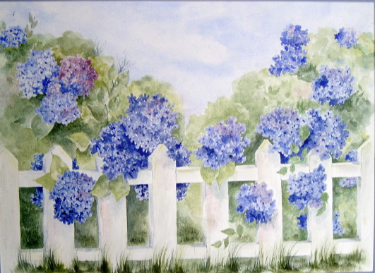 Hydrangea on a white picket fence